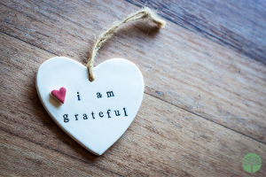 Give the Gift of Gratitude