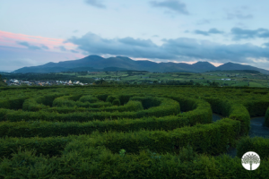 Is It a Maze or a Labyrinth?